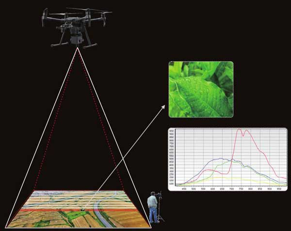 Hyperspectral camera for DJI M210