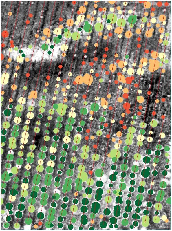 drone hyperspectral camera crops growing analysis